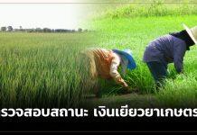 www.เยียวยาเกษตรกร.com,ธ.ก.ส.,เยียวยาเกษตรกร,โควิด-19,โควิด19,